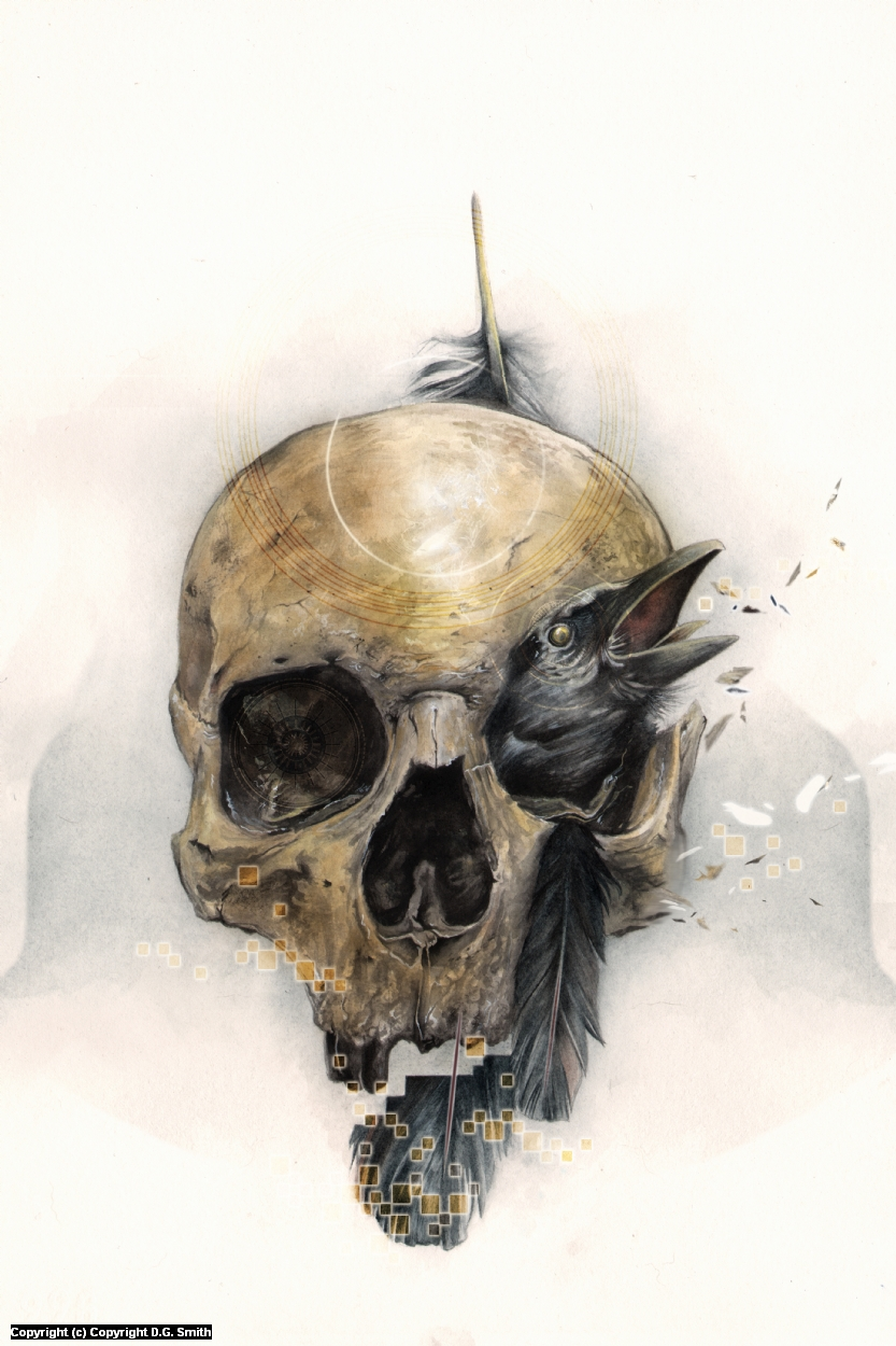 Skull & Feathers Artwork by D.G. Smith