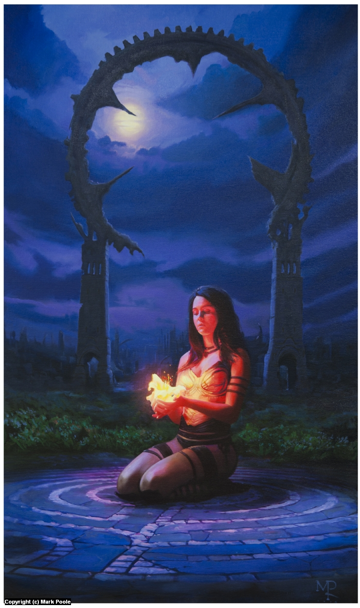 Midnight Lily Artwork by Mark Poole