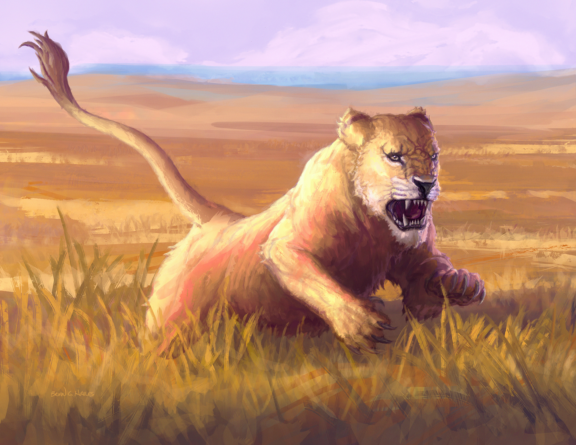 Lioness Artwork by Brian C Hailes