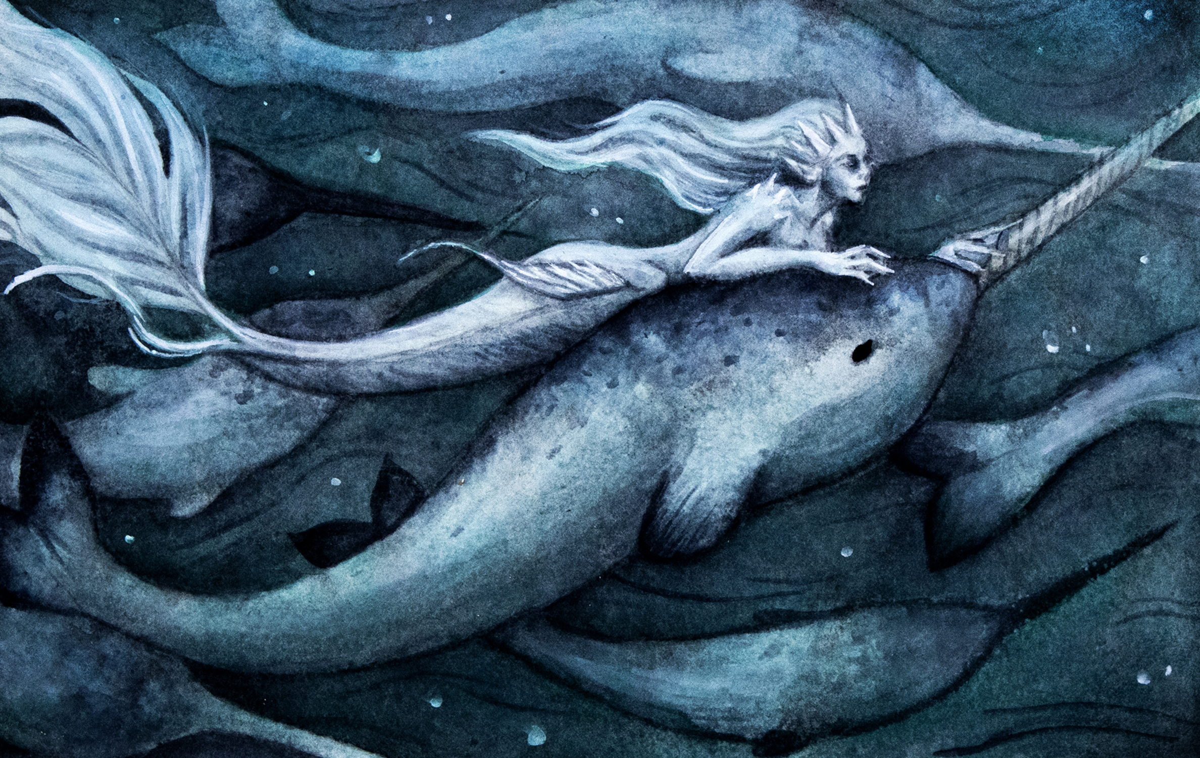 In Arctic Waters Artwork by Caitlin Fowler