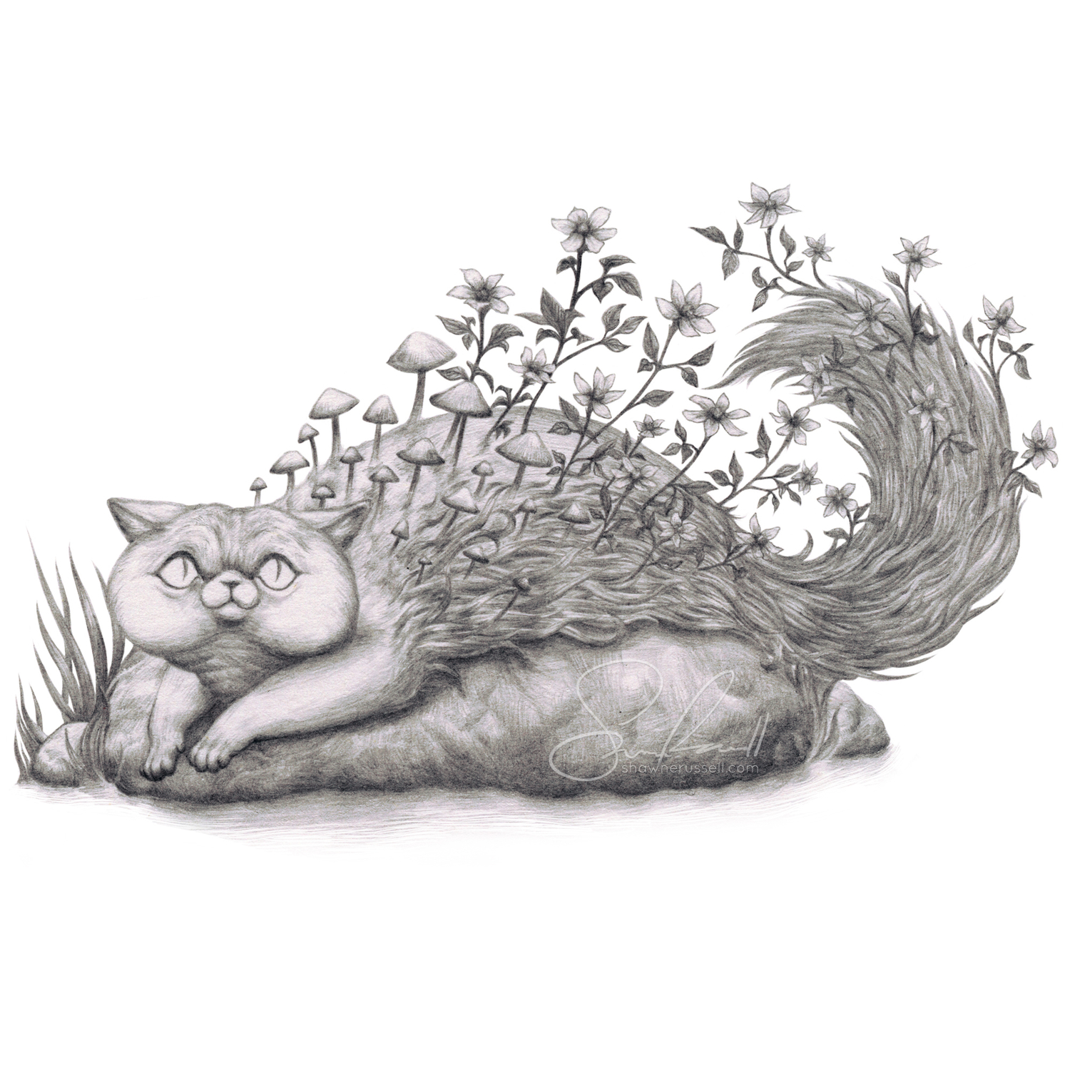 Forest Cat Artwork by Shawn E Russell